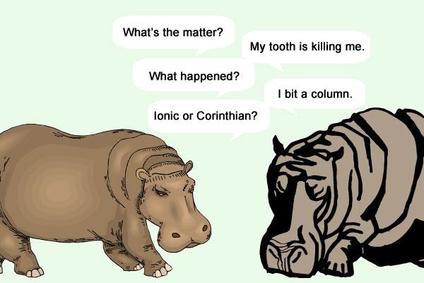 Hippo Toothache Cartoon
