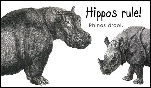 Hippos Rule Rhinos Drool Magnet