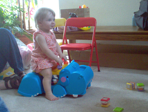 Toddler Riding Hippo Toy