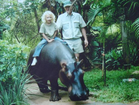 Riding Jessica Hippo